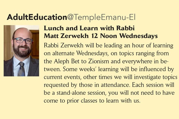 Temple Emanu-El Lunch and Learn